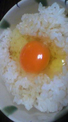 ファイテンさんの卵
