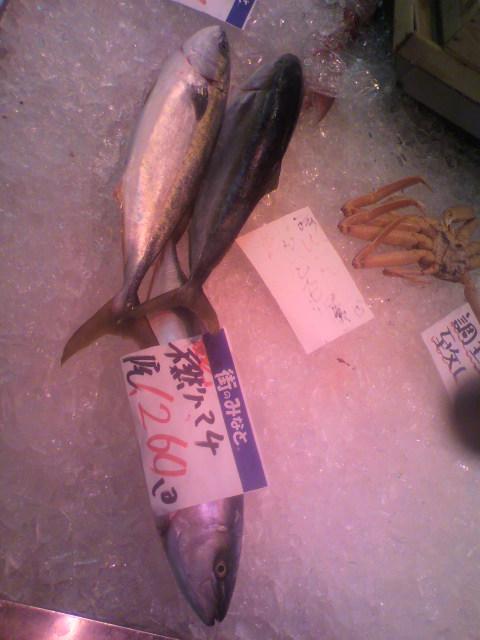 堺にある中央魚市場