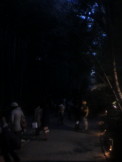 嵐山名物、竹林の小道