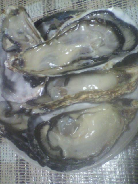 大量な牡蠣を剥いていきます