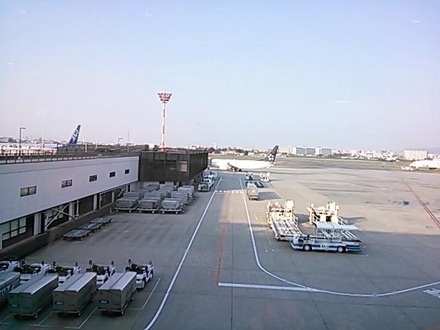 伊丹空港なう
