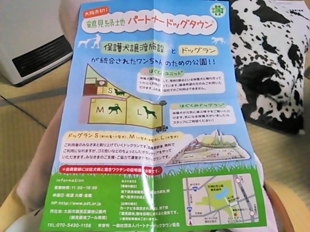 動物保護活動