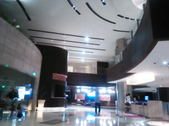 インドの五つ星?ホテル