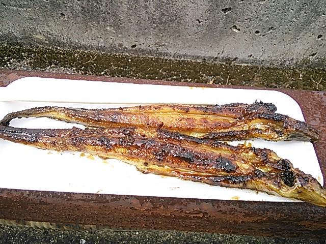 淡路島 炭焼あなご 魚増水産