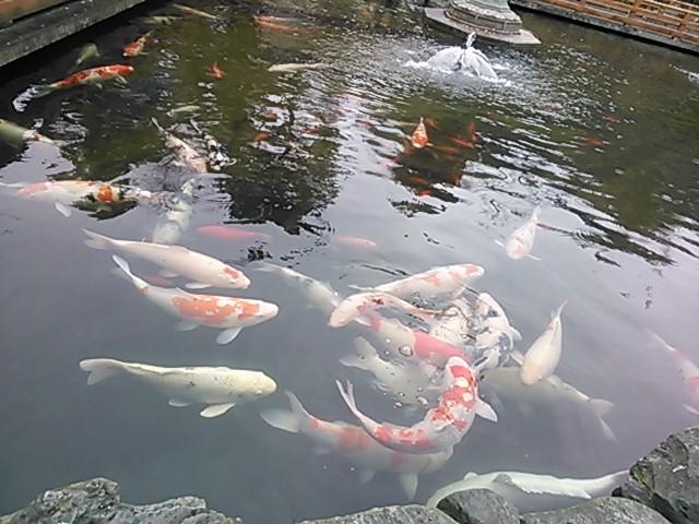四国入り 徳島 第一番札所 霊山寺